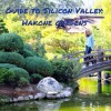 Guide to Silicon Valley: Hakone Garden