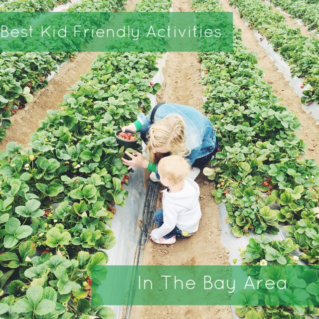 Best Activities to do with Kids in the Bay Area